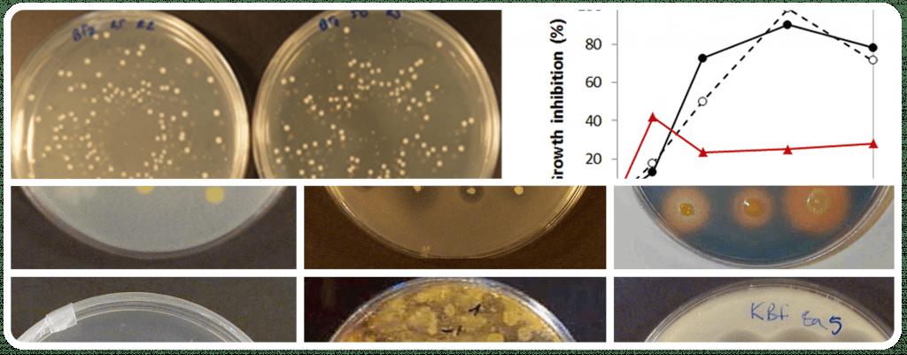 Control de qualitat de pesticides microbians